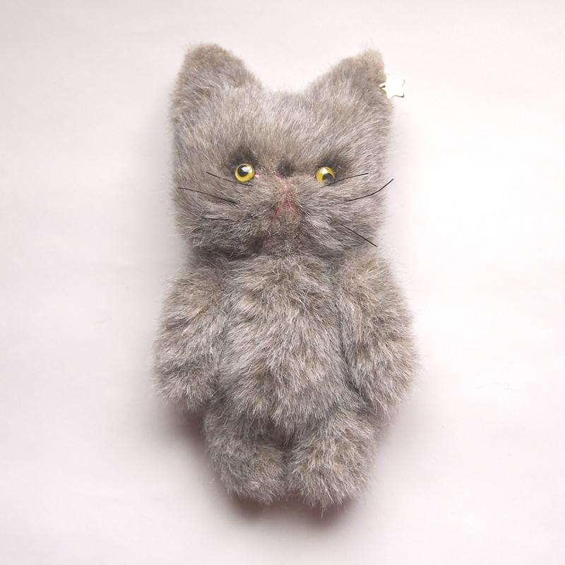 catgy5-1