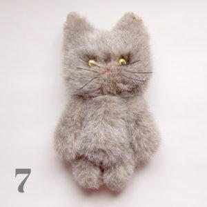 catgy7-5